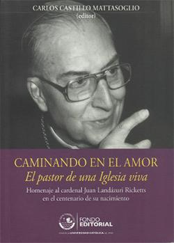 Castillo Mattasoglio, Carlos