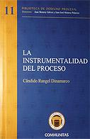 La instrumentalidad del proceso